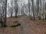 Bieszczady – Główny Szlak Beskidzki – szlak na Fereczatą