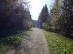 Bieszczady – początek szlaku na Halicz