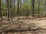 Bieszczady – zejście do Ustrzyk Górnych z Tarnicy
