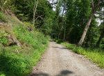 on-Harzer_Hexenstieg