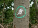 tree-witch-sign