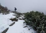 Towards Śnieżka summit