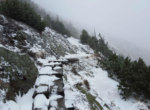 Wooden platforms on the Śnieżka trail