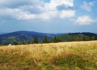Towards Mędralowa