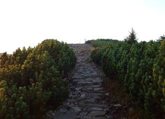 Ridge trail towards the summit