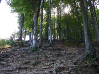 Ascent towards Czantoria