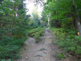 Towards Kiczory