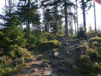 Towards Łączecko pass