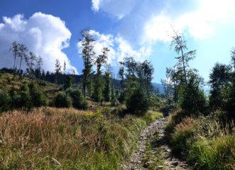 Towards Romanka traverse