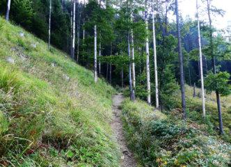 Narrow traverse