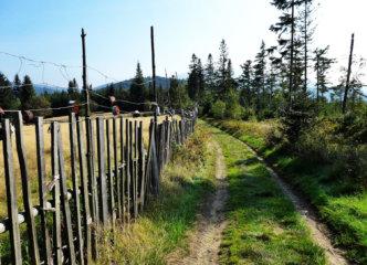 Towards Głuchaczki pass